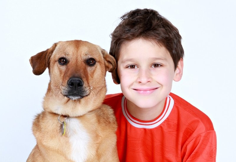 Заводим домашнее животное для ребенка