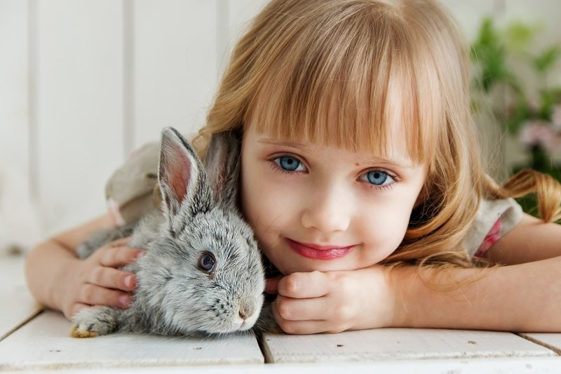 Домашнее животное для ребенка